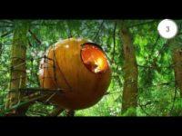 Domek na drzewie czy altanka w ogrodzie ? wybór należy do Ciebie. Zainspiruj się pomysłami z teg ...
