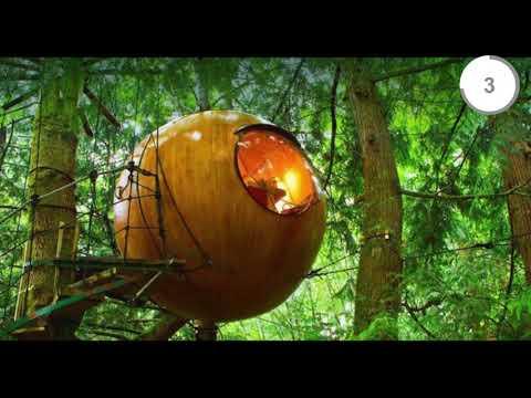 Domek na drzewie czy altanka w ogrodzie ? wybór należy do Ciebie. Zainspiruj się pomysłami z tego filmiku